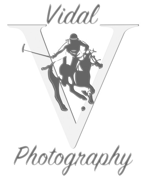Vidal Photography 03-05-2015-01 Watermark2