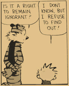 Calvin, Hobbes and Ignorance
