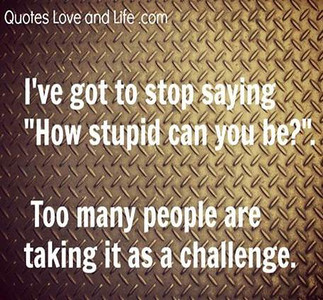 All the Stupid People