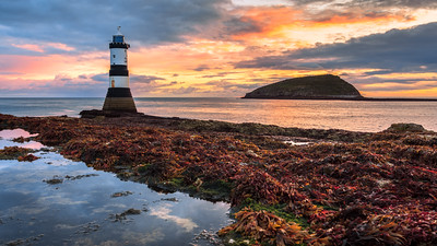 Sunrise, Puffin Island, Penmon Lighthouse, Anglesey, Wales