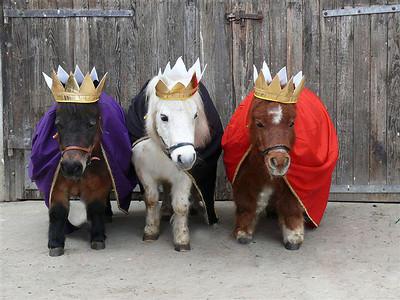 3 Ponies prt