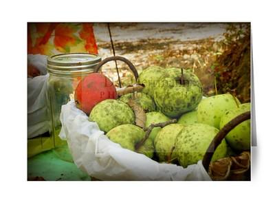 Buffalo Hollow Autumn Harvest - blank inside