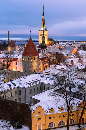 Iconic Skyline, Tallinn, Estonia