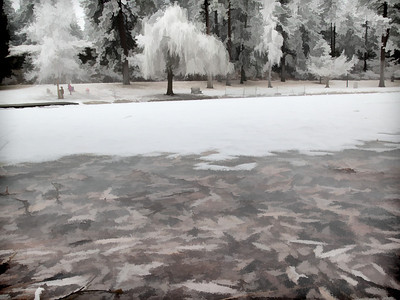 Frosty Manito Park 14 118