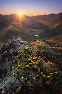 Wapiti Sunrise