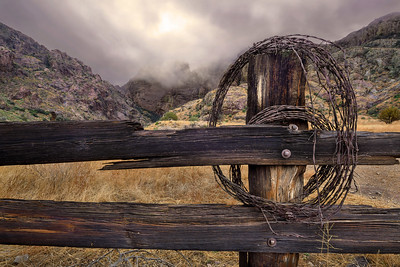 Dripping Springs Fence