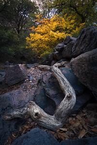 Fall in the Desert Peaks