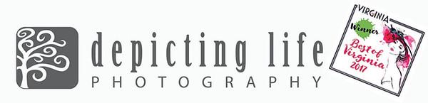 DLP Logo Name