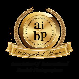 2017 AIBP member-gold-2