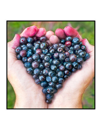 """Huckleberry Heart"" note cards"