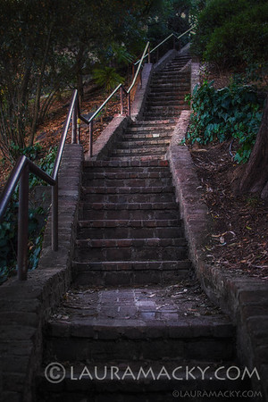 Stairs of Telegraph Hill, San Francisco