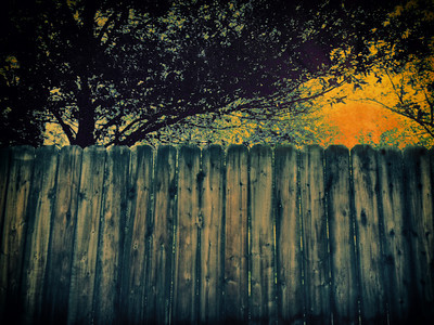 Fence taken on iPhone