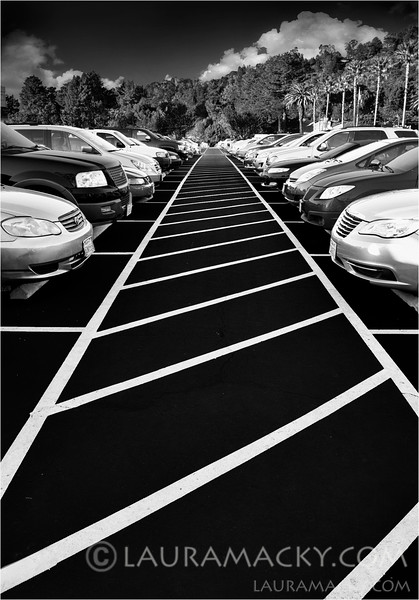 Lines and Patterns and Cars, Oh My!