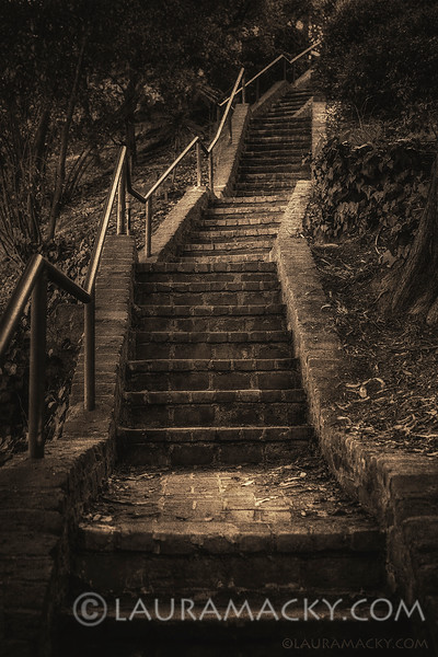 Stairs of Telegraph Hill, San Francisco (Monochromatic)