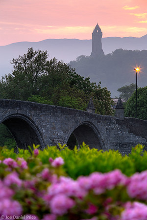Flowers, Old Stirling Bridge, Wallace Monument, Stirling, Scotland