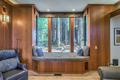Living Room Redwoods View