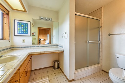 South Master Bathroom