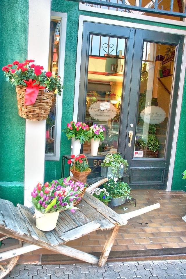 Foxgloves Flowers––Victoria BC Canada