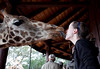 It's great fun to put giraffe food in your mouth and let them take it with their tongues!