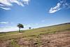 Masai Mara-054