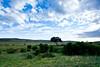 Masai Mara-016