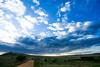 Masai Mara-034