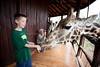 Giraffe Ctr-022