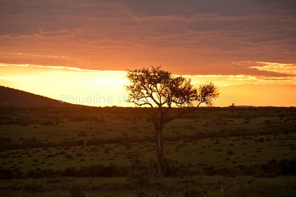 Masai Mara-048