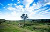 Masai Mara-020