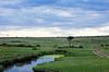 Masai Mara-036