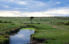 Masai Mara-035
