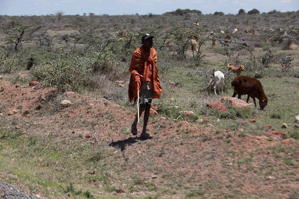 Masai Mara-061