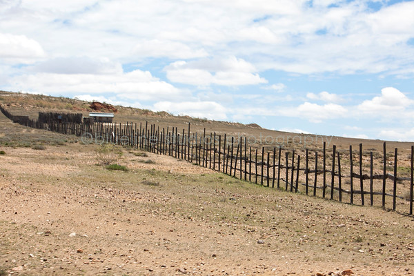 Masai Mara-063
