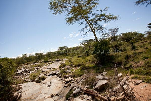 Masai Mara-055