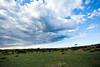 Masai Mara-021