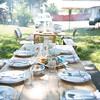 Piedmont_Summer-3611