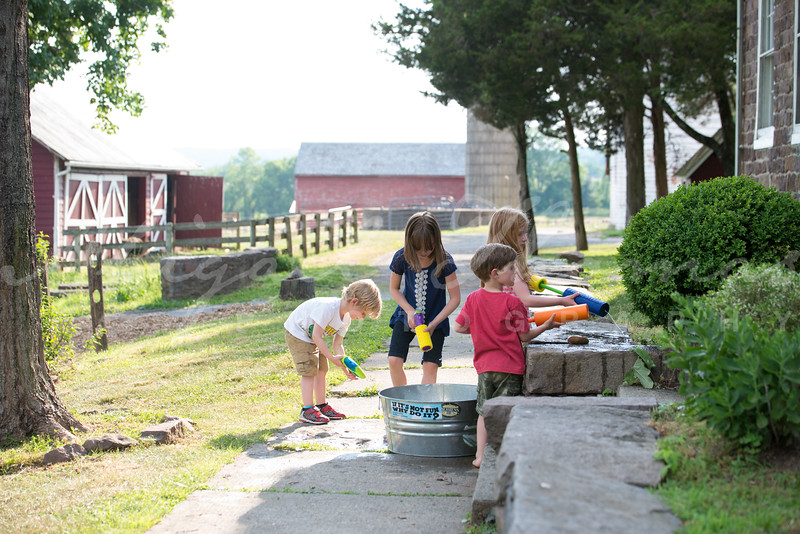 Piedmont_Summer-6802