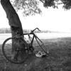Piedmont_Summer-4557