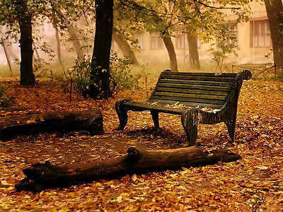 nature-wallpaper-autumn-fall_1600x1200