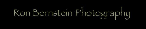 ronbernsteinphotography