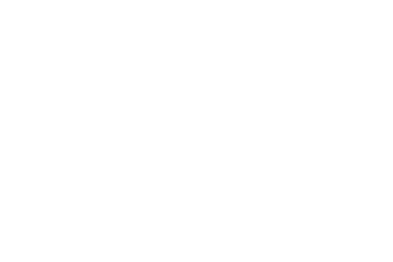 Flynn-Guard-white-low-res 2
