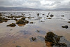 Pools - Lunderston Bay - 14 February 2013