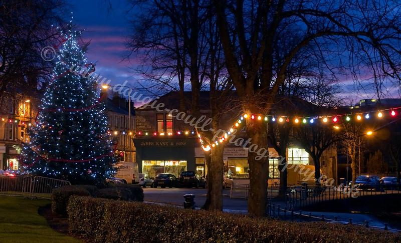 Cardwell Bay Christmas Lights