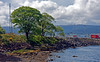 McInroy's Point - Gourock