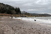 Dogs Playing - Lunderston Bay - 1 January 2012