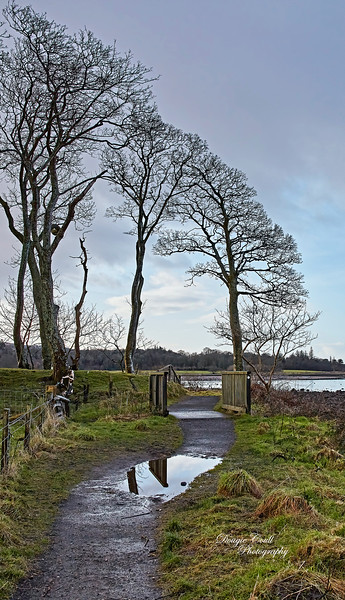 Lunderston Bay - 26 February 2020