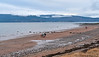 A Day on the Beach at Lunderston Bay - 28 January 2017