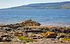 Beach near Lunderston Bay - 10 June 2015