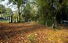 Cemetery - Greenock - 16 October 2012