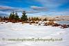 Gryffe Reservoir in the Snow